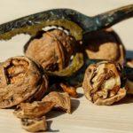 שייקים ירוקים להרזיה – מתכונים למגוון שייקים טעימים ובריאים